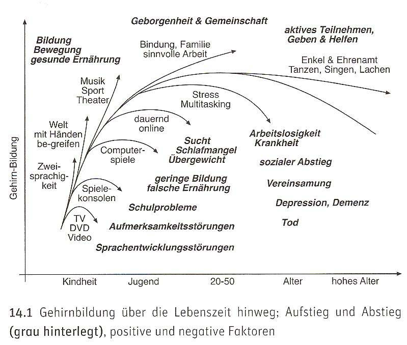 MANFRED SPITZER DIGITALE DEMENZ PDF